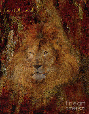 Lion Of Judah Poster by Constance Woods