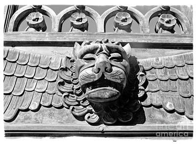 Lions Head Poster by Carsten Reisinger