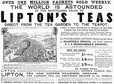 Lipton Tea Ad, 1892 Poster