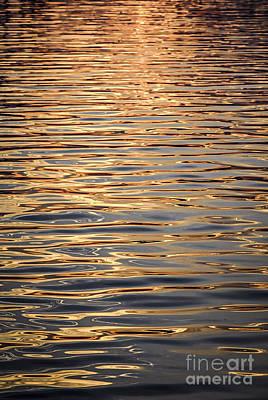 Liquid Gold Poster by Elena Elisseeva