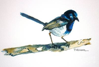 Poster featuring the painting Little Blue Wren - Original Sold by Therese Alcorn
