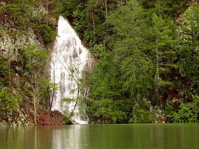 Little Laurel Branch Falls Landscape Poster