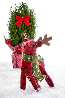 Little Reindeer Christmas Card Poster by Edward Fielding