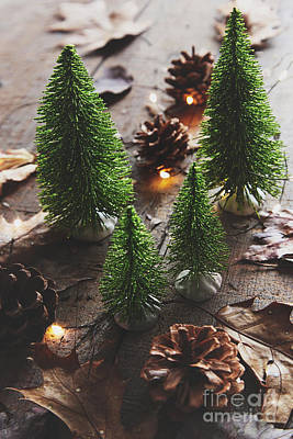 Little Trees With Pine Cones And Leaves  Poster by Sandra Cunningham