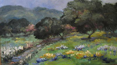 Live Oaks And Wildflowers Poster