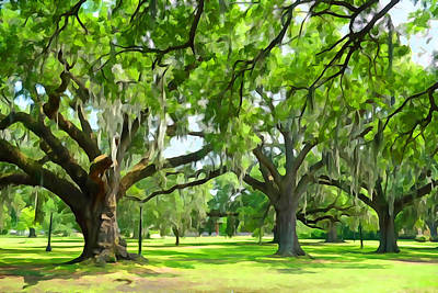 Live Oaks - Audubon Park New Orleeans Poster by Dana Sohr