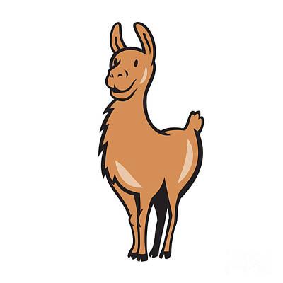 Llama Cartoon Poster