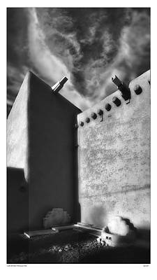 Lobo De San Francisco Asi Poster by Gary Warnimont