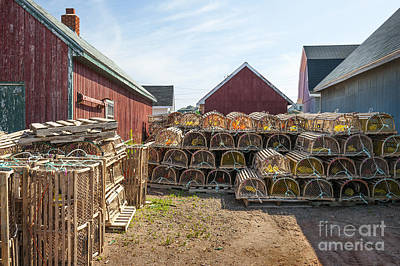 Lobster Traps In North Rustico Poster by Elena Elisseeva