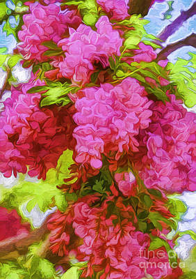 Locust Blooms-painted-2 Poster by Nancy Marie Ricketts