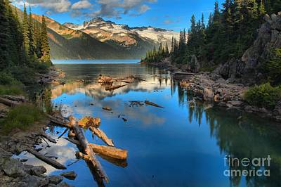 Logs Rocks And Reflections In Garibaldi Poster