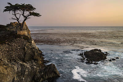 Poster featuring the photograph Big Sur - Lone Cypress by Francesco Emanuele Carucci
