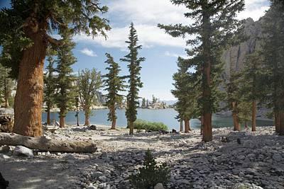 Lone Pine Lake Shoreline Poster by Jim West