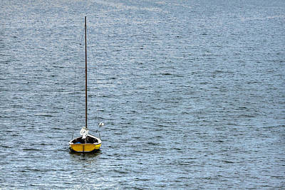 Lone Sailboat Poster