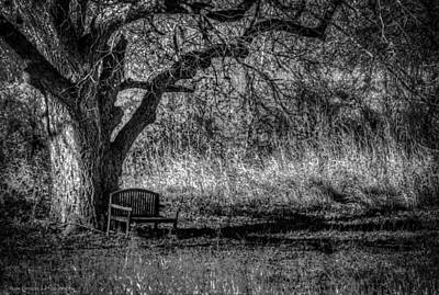 Lonely Bench Poster by Ross Henton