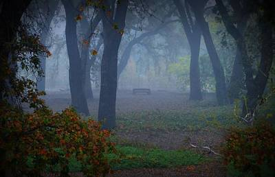 Lonely Park Bench In The Fog Poster
