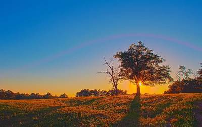 Poster featuring the photograph Lonely Tree On Farmland At Sunset by Alex Grichenko