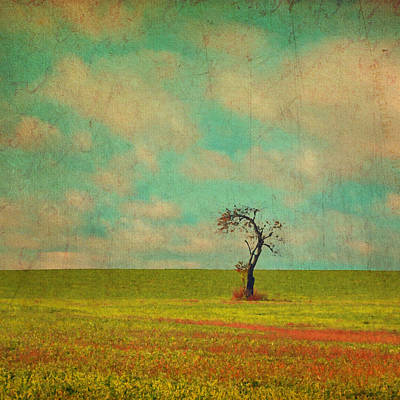 Lonesome Tree In Lime And Orange Field And Aqua Sky Poster