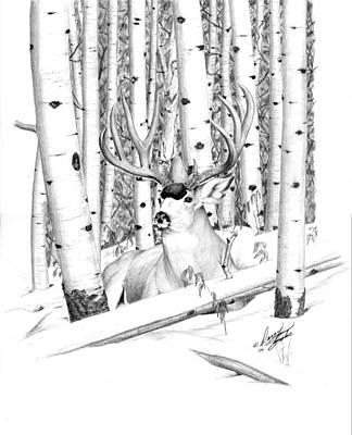 Long Buck Poster