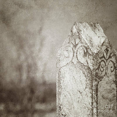 Long Gone Poster by Trish Mistric