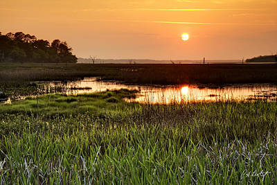 Long Marsh View Poster