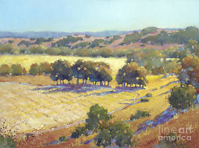 Long Shadows At Los Olivos Poster by Joyce Hicks