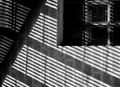 Long Shadows Poster by Steven Milner