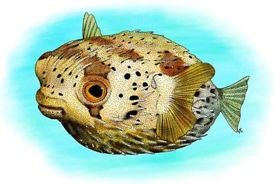 Long-spine Porcupine Fish Poster