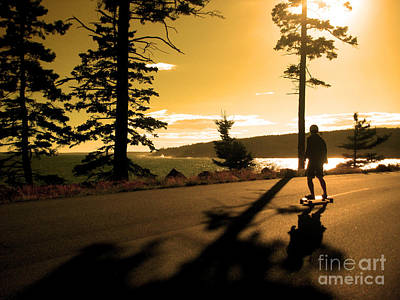 Longboarding Acadia National Park Poster