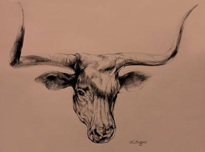 Longhorn Drawing Poster