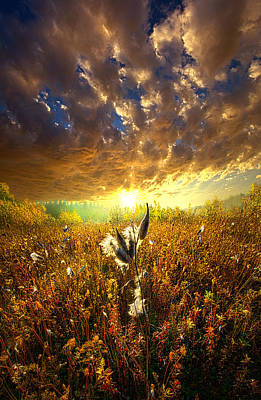 Longing To Return Poster by Phil Koch
