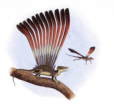 Longisquama Insignis Prehistoric Lizard Poster by Deagostini/uig