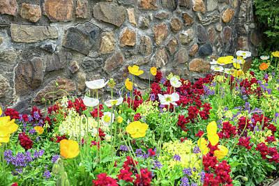 Longwood Gardens, Iceland Poppy Poster
