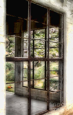 Looking Through The Window By Diana Sainz Poster