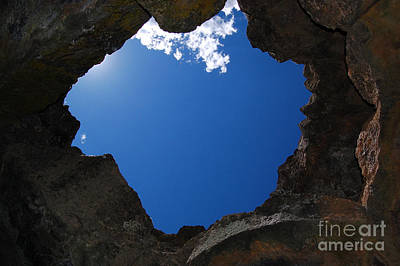 Poster featuring the photograph Looking Up 2 by Debra Thompson