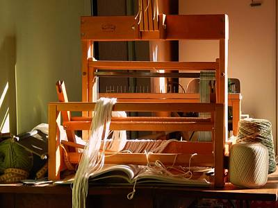Loom In Winter Light Poster by Aliceann Carlton