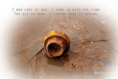 Poster featuring the photograph Lost At Sea by Lena Wilhite