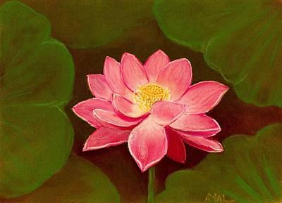 Lotus Flower Poster by Anastasiya Malakhova