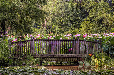 Poster featuring the photograph Lotus Garden Pond And Bridge by Jerry Gammon