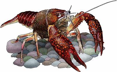 Louisiana Crawfish Poster by Roger Hall