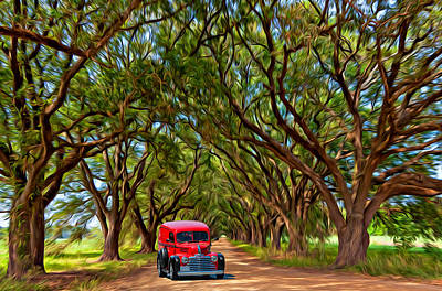 Louisiana Dream Drive  Poster by Steve Harrington