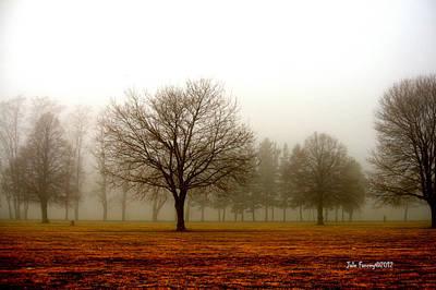 Love Foggy Mornings Poster