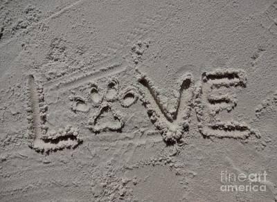 Love Poster by Megan Cohen