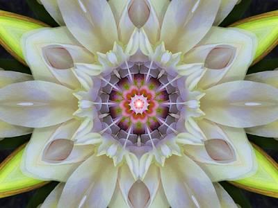 Love Star Flower Mandala Poster