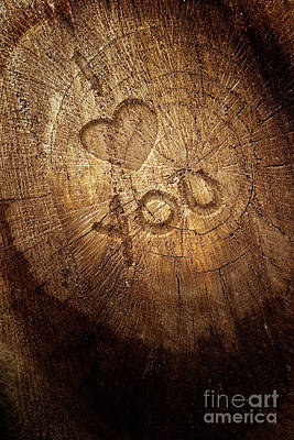 Love Text On  Wooden Background Poster