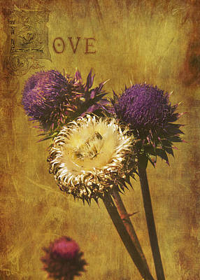 Loving Thistles Poster by AGeekonaBike Photography