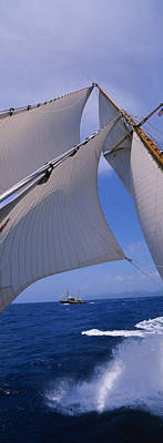 Low Angle View Of A Sailboats Mast Poster by Panoramic Images