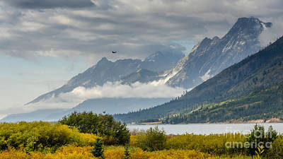 Low Clouds On The Teton Mountains Poster by Debra Martz