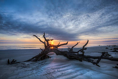 Low Tide At Sunrise Poster by Debra and Dave Vanderlaan