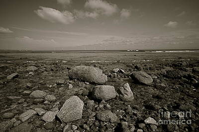 Poster featuring the photograph Low Tide by Nicola Fiscarelli